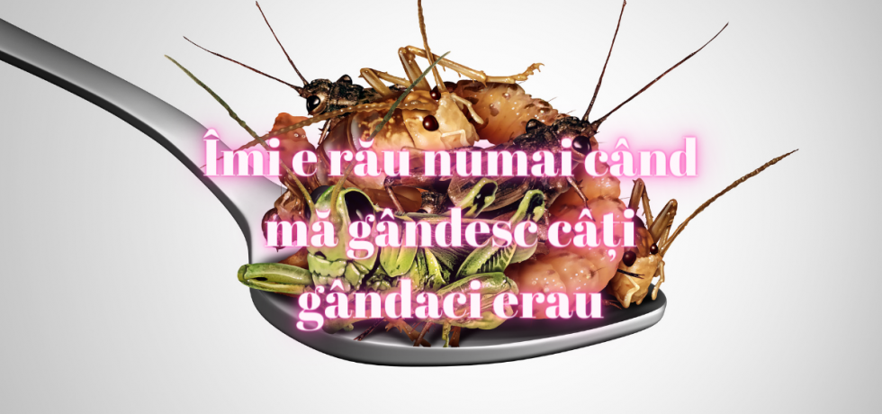 gândaci 1